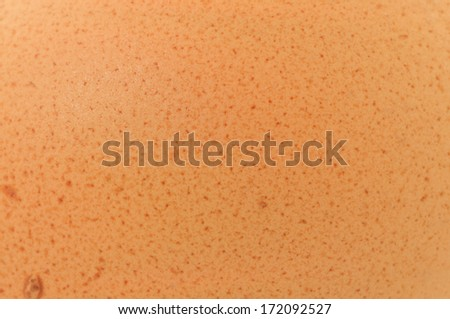 A background texture of an egg shell - stock photo