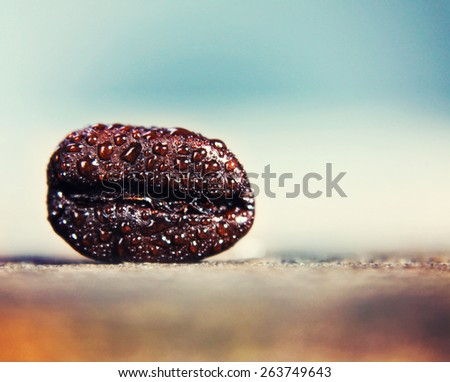 a background with a coffee bean in macro (extremely shallow depth of field) close up - stock photo