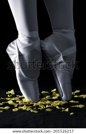 A ballet dancer standing on toes with rose petals on black background artistic conversion - stock photo