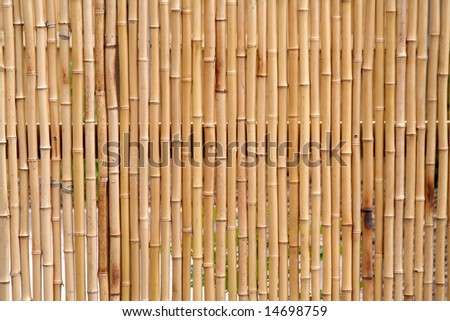A bamboo fence - stock photo