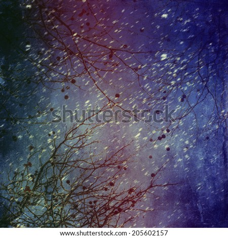 A bare tree in winter with bokeh - stock photo