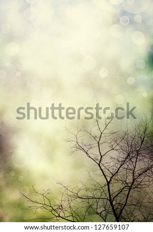 A bare tree in winter with bokeh light effects.  Image displays a pleasing paper texture at 100%. - stock photo