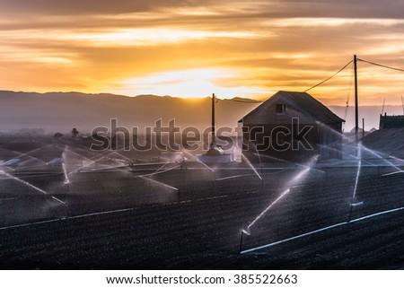 A barn at sunrise in the Salinas Valley, the hub of agriculture in central California, as freshly planted crops are sprayed with water. - stock photo