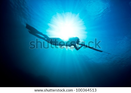 A beautiful days spearfishing on the reef. - stock photo