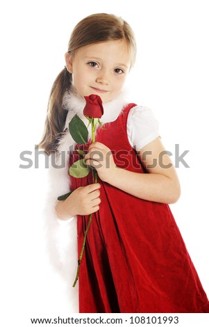 A beautiful elementary girl dressed in red with a white boa, shyly looking at viewer while holding a long stemmed red rosebud.  On a white background. - stock photo