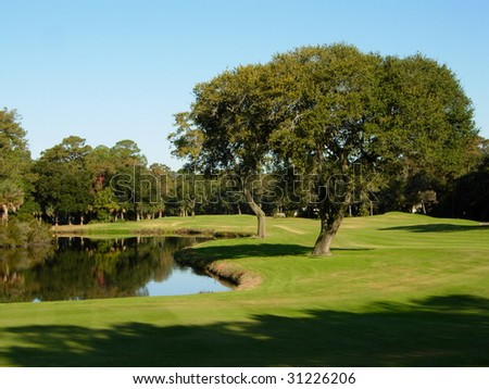 A Beautiful Golf Course with Pond and old Tree - stock photo