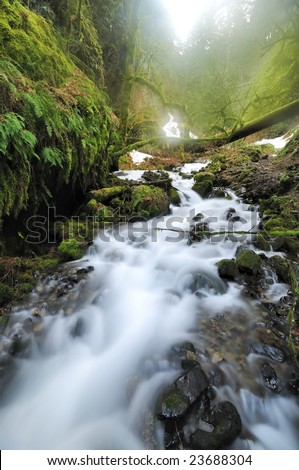 a beautiful mountain stream in early morning of a foggy day - stock photo