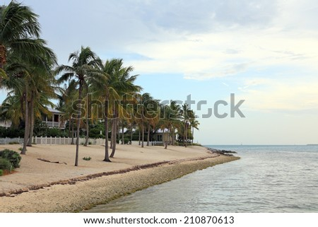 A beautiful shoreline with a deserted beach, palm trees, and a white picket fence. - stock photo