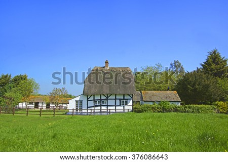 A beautiful summer day in the Gloucestershire countryside showing a typically English thatched country cottage near Hartpury with a domesticated Peacock sat on garden fence, Gloucestershire, UK - stock photo