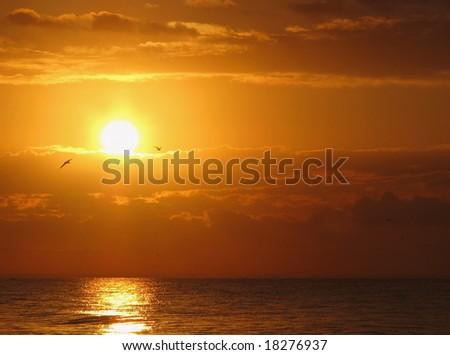 a beautiful sunrise on Sanibel Island Florida - stock photo
