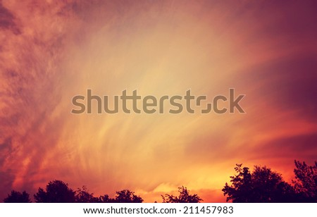 a beautiful sunset over treetops toned with a retro vintage instagram filter  - stock photo