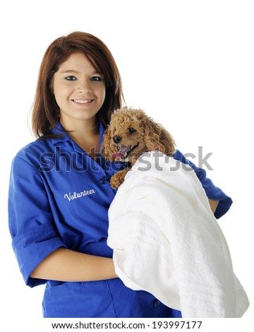 A beautiful teen volunteer happily holding a toy poodle wrapped in a white towel.  On a white background. - stock photo