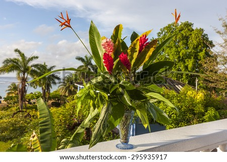 A beautiful tropical red ginger and hibiscus flowers. Jamaica - stock photo