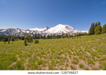 A beautiful view of Mount rainier - stock photo