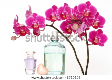 A beauty set with an orchid and perfume bottles and a heart-shaped piece of soap - stock photo
