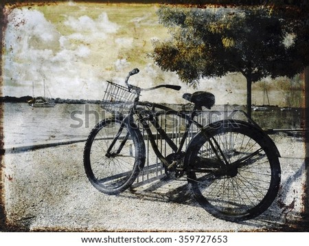 A bicycle at a park on the bay in Sarasota, Florida. - stock photo