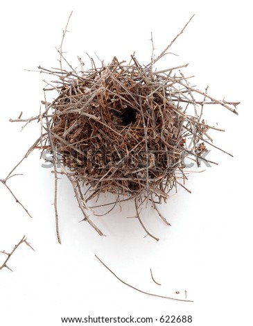 A bird's nest photographed on white, - stock photo