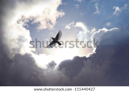 A bird spreading its wings to fly to heaven trough dramatic cloudscape. - stock photo