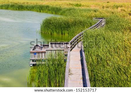 A birding observation boardwalk / Birding Boardwalk / An observation birding boardwalk in Port Aransas, Texas - stock photo