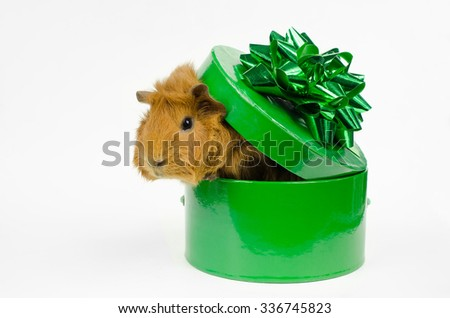 a bit uncomfortable...better get out - stock photo