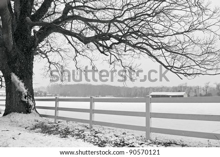 A black and white snowy Winter in scene in Central New Jersey. - stock photo