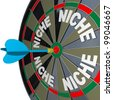 A blue dart hits a bulls-eye to find a unique Niche market with words representing several niches on a dartboard, how to find customers in unique demographic groups with accurate targeted marketing - stock photo