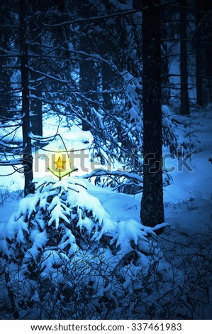 A blueish colored snowy forest with a warm blazing golden star - christmas concept  The blueish colored forest is an artistic intention of a very cold snowy forest in winter  - stock photo