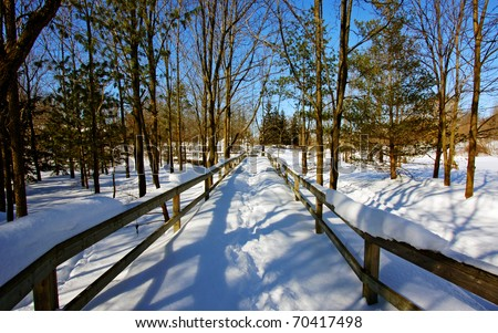 a boardwalk leading into a wintery forest - stock photo