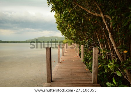 A boardwalk through the marshes beside mangrove forest - stock photo