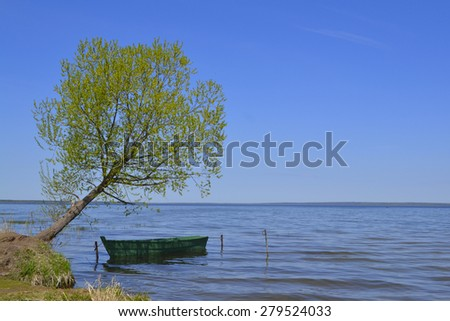 A boat tied to a tree - stock photo