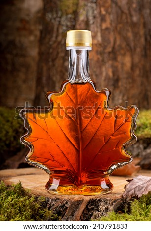 A bottle of delicious maple syrup in hardwood forest setting. - stock photo