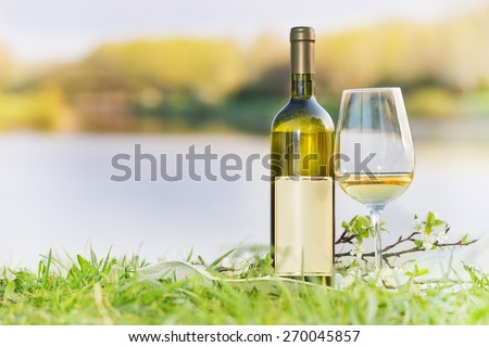 A bottle of white wine with a glass arranged in nature. Picnic concept. Focus on bottle - stock photo