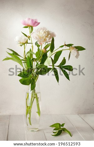A  bouquet of  pale peonies in a glass vase on wooden table. - stock photo