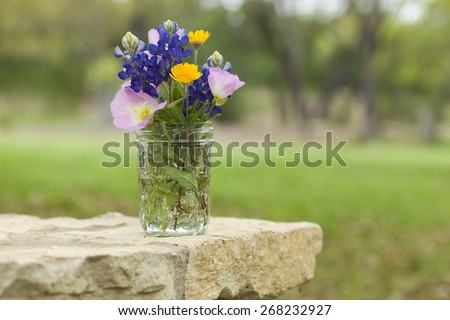 A bouquet of Texas wildflowers from the Texas Hill Country in a mason jar on a stone wall. Evening primroses, bluebonnets and yellow daisies. - stock photo