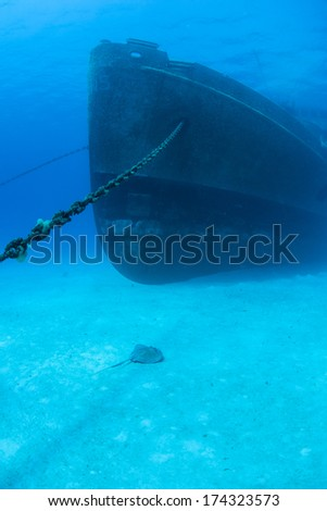 A bow of a massive shipwreck, the Kittewake, is anchored to a sandy seafloor in Grand Cayman. This ship was sunk intentionally to act as an artificial reef and as an attraction for scuba divers. - stock photo