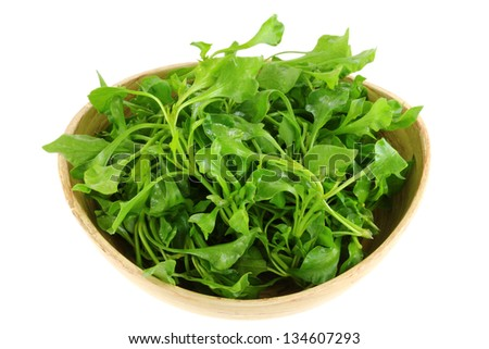 A Bowl of Fresh Watercress (Nasturtium officinale), isolated on white background - stock photo