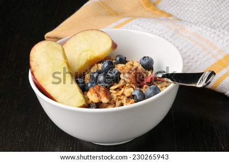 A bowl of healthy organic granola with apples, blueberries, pecans, walnuts and raisins - stock photo