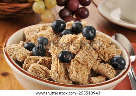 A bowl of whole wheat breakfast cereal with blueberries - stock photo
