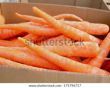 A box of fresh, organic carrots for sale at local farmers market. - stock photo