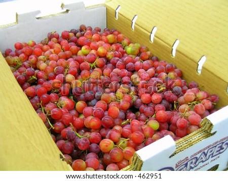 A Box of Grapes - stock photo