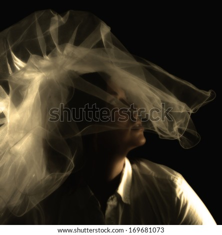 a bride in a veil - stock photo