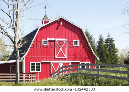 A bright red barn stands in the mid-day sun/Bright Red, Barn/A red barn in a rural area - stock photo