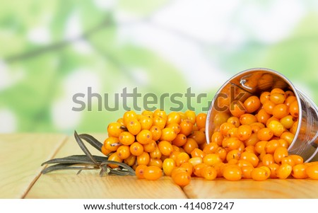 A bucket of fresh sea buckthorn berries isolated on a white background. - stock photo