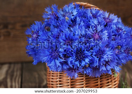 A bunch of beautiful summer flower of Cornflower in the basket. Concept of romantic.Close up. - stock photo