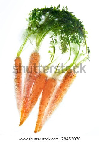 a bunch of fresh juicy carrots frozen in an ice block - stock photo