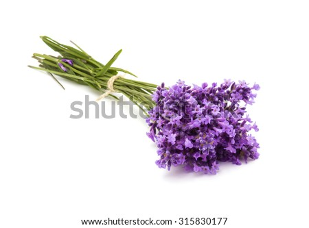 a bunch of lavender flowers - stock photo