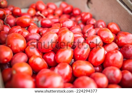 A bunch of tomatoes on a market - stock photo