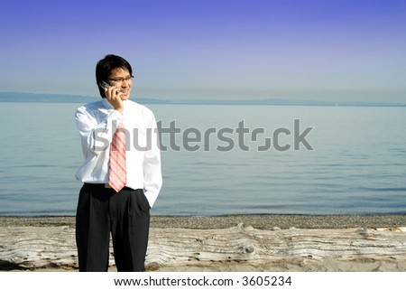 A businessman talking on the cell phone at the beach - stock photo