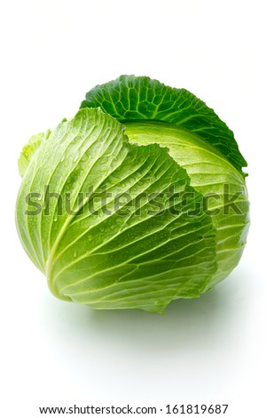 A cabbage head with droplets of water on it. - stock photo