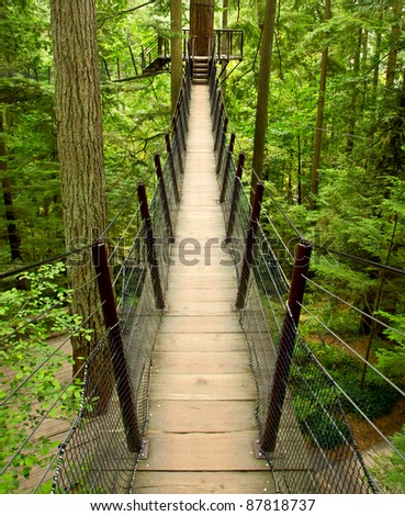 A cable supported suspension bridge takes tourists high above the forest floor on a walkway adventure near Vancouver, BC Canada - stock photo